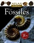 Giovanni Pinna - Les Fossiles.