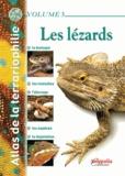 Gireg Allain - Atlas de la terrariophilie - Tome 3, Les lézards.