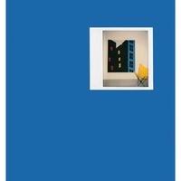 Glenn D. Lowry - Tom Slaughter - Blue cover.