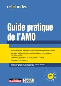Grégory Berkovicz et Virginie Thevenot - Guide pratique de l'AMO.