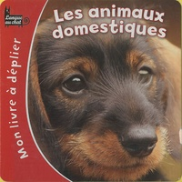 Gregory Denooz - Les animaux domestiques.