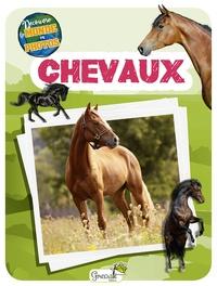 Grenouille éditions - Chevaux.