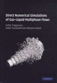 Ucareoutplacement.be Direct Numerical Simulations of Gas-Liquid Multiphase Flows Image