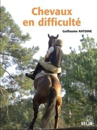 Guillaume Antoine - Chevaux en difficulté : diagnostics et préconisation.