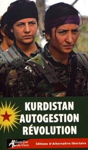 Guillaume Davranche et Bruno Cardhi - Kurdistan autogestion révolution.