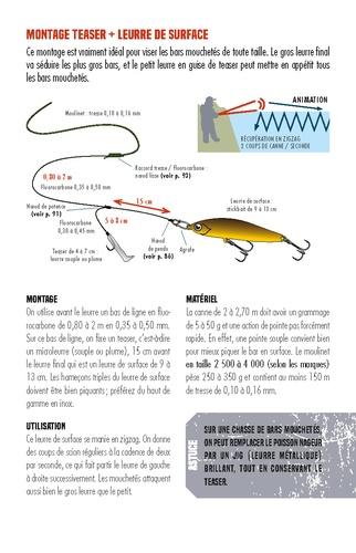 Pêche facile en bord de mer. 40 poissons, bas de ligne & noeuds
