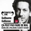 Guillaume Gallienne - Ca peut pas faire de mal ! - Baudelaire, Apollinaire, Eluard et Aragon.