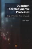Günter Mahler - Quantum Thermodynamic Processes - Energy and Information Flow at the Nanoscale.