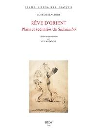 Gustave Flaubert - Rêve d'Orient - Plans et scénarios de Salammbô.