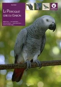 Guy Barat - Le perroquet gris du Gabon.