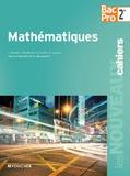 Guy Barussaud et Isabelle Baudet - Mathématiques 2e Bac Pro.