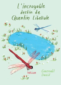 Gwenaël David - L'incroyable destin de Quentin Libellule.