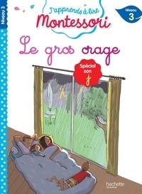 Gwenaëlle Doumont et Charlotte Leroy-Jouenne - Le gros orage - Spécial son j, niveau 3.