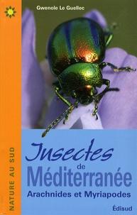 Gwenolé Le Guellec - Insectes de Méditerranée - Arachnides et Myriapodes.