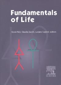 Alixetmika.fr Fundamentals of life Image