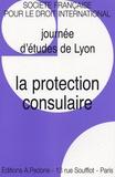 Habib Gherari et Stéphane Doumbé-Billé - La protection consulaire - Journée d'études de Lyon SFDI.