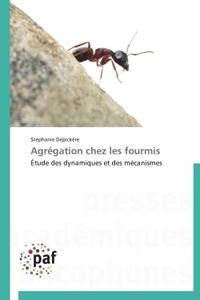 Agrégation chez les fourmis - Etude des dynamiques et des mécanismes.pdf