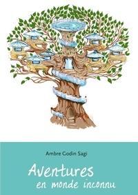 Sagi Godin - Aventures en monde inconnu.
