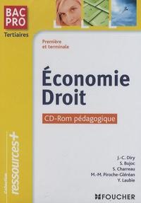 Jean-Charles Diry et Stéphane Bujoc - Economie Droit 1e et Tle Bac Pro Tertiaires - CD-ROM pédagogique.