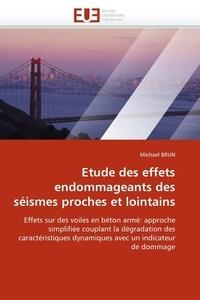 Michaël Brun - Etude des effets endommageants des séismes proches et lointains.