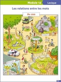 Français CE1 Français explicite - 13 Posters.pdf