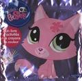 Hachette Jeunesse - Littlest Petshop - Un livre d'activités et 6 crayons de couleur.