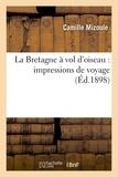 Sarton - La Bretagne à vol d'oiseau : impressions de voyage.