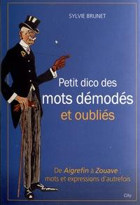Sylvie Brunet - Le petit dico des mots démodés et oubliés.