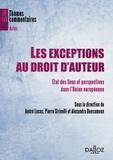 Pierre Sirinelli et André Lucas - Les exceptions au droit d'auteur - Etats des lieux et perspectives dans l'Union européenne.