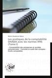 Martin Dieudonné Ndene - Les pratiques de la comptabilité OHADA avec les normes IFRS - Tome 1.