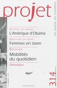 Bertrand Hériard Dubreuil - Projet N° 314, Janvier 2010 : .