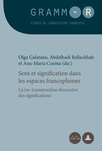 Olga Galatanu et Abdelhadi Bellachhab - Sens et signification dans les espaces francophones - La (re)construction discursive des significations.