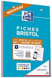 HAMELIN - Bloc de fiches Bristol 2.0 couleurs assorties perforées A5 30 feuilles Q5x5