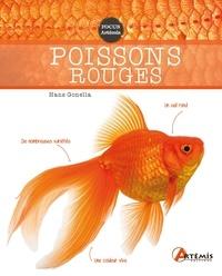 Hans Gonella - Poissons rouges.