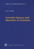 Hans Triebel - Function Spaces and Wavelets on Domains.