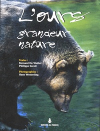 Lours grandeur nature en Europe.pdf
