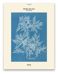 Anna Atkins - Herbier des mers, Photographs of British Algae (1843-1853) - Une illustration imprimée sur un papier de création avec 1 livet autour de l'oeuvre.