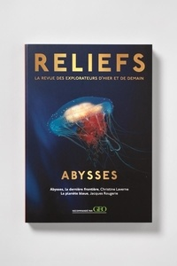 Pierre Fahys - Reliefs N° 1 : Abysses.