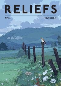 Pierre Fahys - Reliefs N° 13 : Prairies.