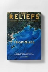 Pierre Fahys - Reliefs N° 2 : Tropiques.