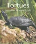 Hartmut Wilke - Tortues terrestres et aquatiques.