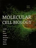 Harvey Lodish et Arnold Berk - Molecular Cell Biology.