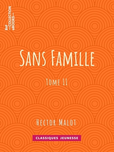 Sans famille. Tome II