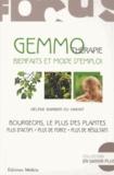 Hélène Barbier du Vimont - Gemmothérapie, bienfaits et mode d'emploi - Bourgeons, les plus des plantes.