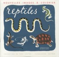 Hélène Guertik - Des reptiles.