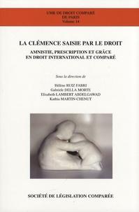 Hélène Ruiz Fabri et Gabriele Della Morte - La clémence saisie par le droit - Amnistie, prescription et grâce en droit international et comparé.