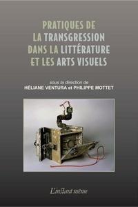 Héliane Ventura et Philippe Mottet - Pratiques de la transgression dans la littérature et les arts visuels.