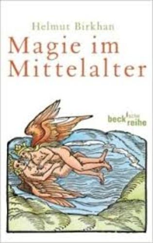 Helmut Birkhan - Magie im Mittelalter.