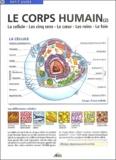 Henri Medori et Jean Valery - Le corps humain - Tome 2, La cellule, les cinq sens, le coeur, les reins, le foie.