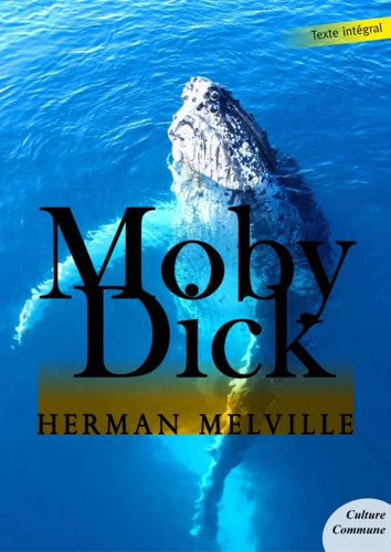 Moby Dick - Herman Melville - 9782363073495 - 1,99 €
